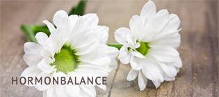 FRAUENHEILPRAXIS Ute Reder | Hormonbalance
